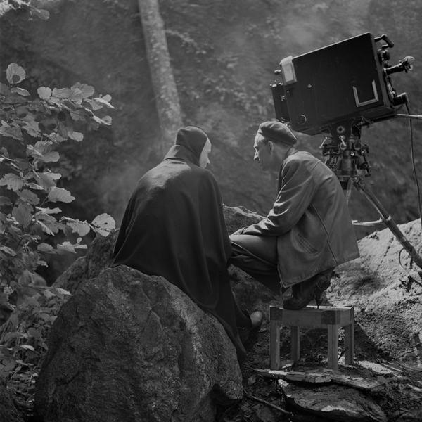 Beginners Guide to Bergman