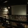 Bazin 100: Qu'est ce que le cinema? Vol 2
