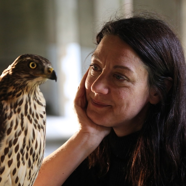 H is for Hawk + Q&A