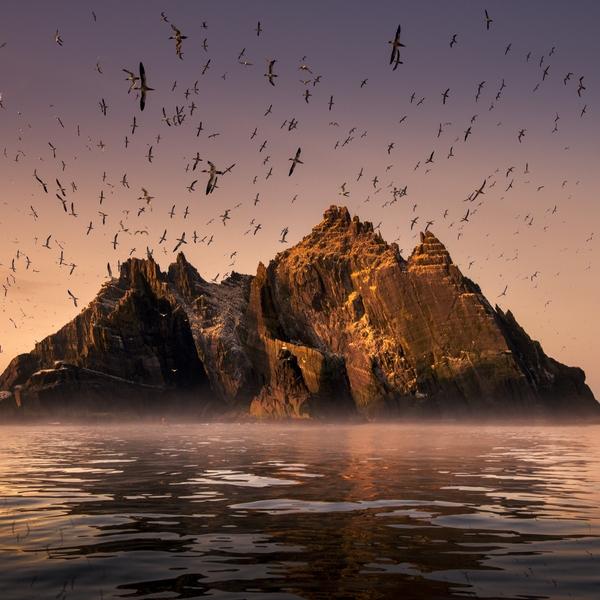 Wild Ireland: Edge of the World + Q&A