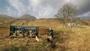 The Serengeti Rules + Q&A