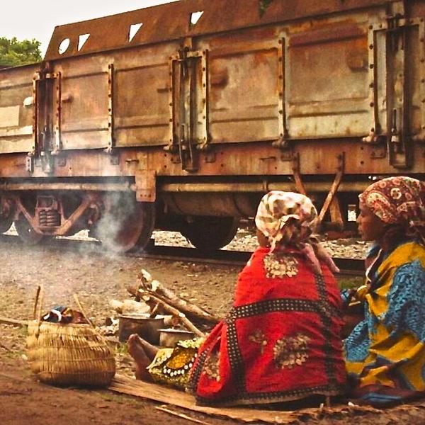 Train of Salt and Sugar + Limpopo Line