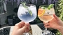South West Gin Celebration: Free Tasting Event