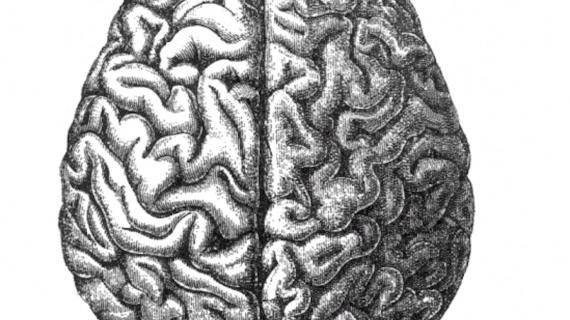 The Next Seven Billion AI Programs, a For Sceptics talk with studio resident Tim Kindberg