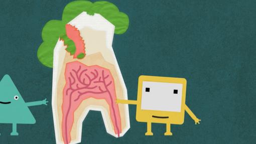 Okido Art & Science Workshop (Teeth)