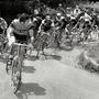Cyclescreen: Bristol Bike Film Festival