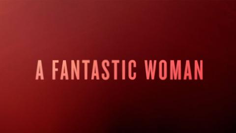 Preview: A Fantastic Woman