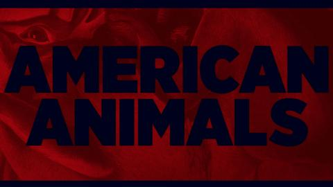 Preview: American Animals + Director's Q&A