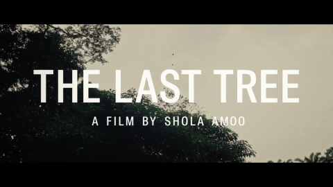 Preview: The Last Tree + Director Q&A